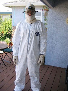 Commercial mold inspection