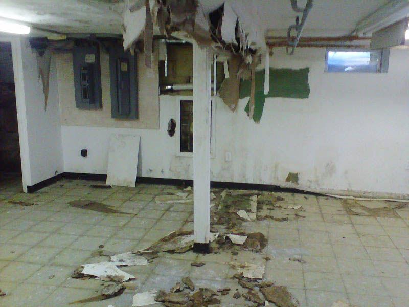 Commercial Mold Remediation Philadelphia Nj
